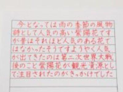 美文字で書けると、品格も上がる♡【ペン字6回コース・6月お手本掲載(横書き)】