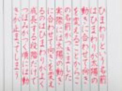 おとなの美しい字を書きたいかたへ【ペン字6回コース・8月お手本/横書き】